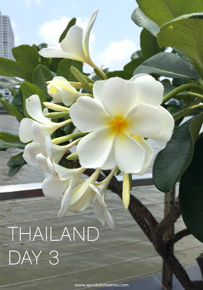 Thailnad_day3_1